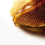 蜂蜜真的比糖更健康?教授解密