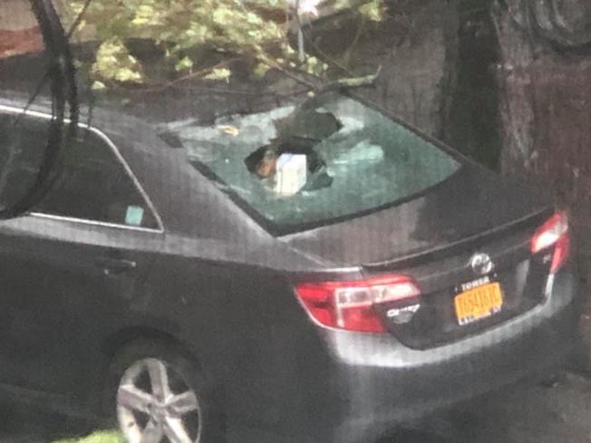 96街3大道交Marine大道停放的一輛汽車被吹倒的大樹砸壞。(讀者提供)