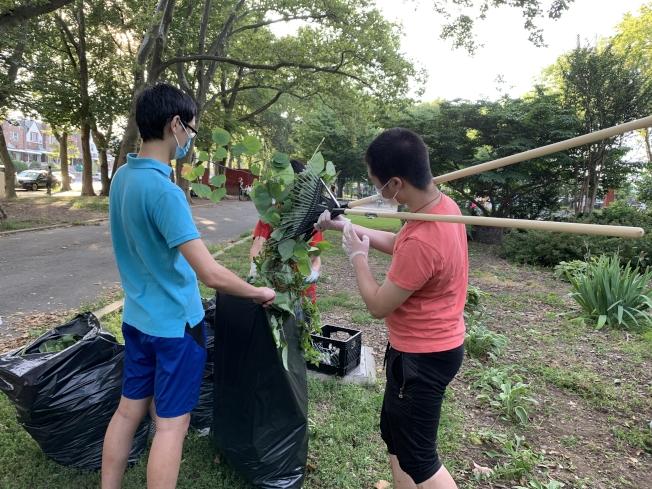 紐約親子互助會5日一清早就號召義工在8大道清潔被風暴吹散的樹枝和樹葉。(黄妮可提供)