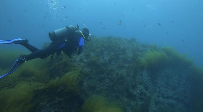 潛水有風險,還需謹慎。 (讀者提供)