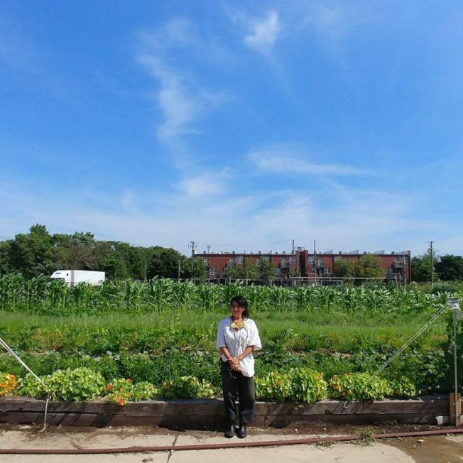 Rachel Nami Kimura想藉日向農場推廣東亞文化及城市有機栽種。(取自Routes2farm.org)