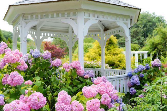 皇后區植物園等公園提供足夠的空間,確保民眾保持社交距離。(取自皇后區植物園官網)