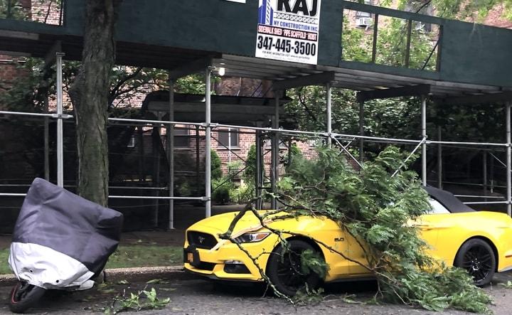 熱帶風暴伊賽亞斯襲紐約,法拉盛友聯街與大學點附近大量樹木被吹倒,砸中路邊停泊的車輛。(楊雪梨提供)