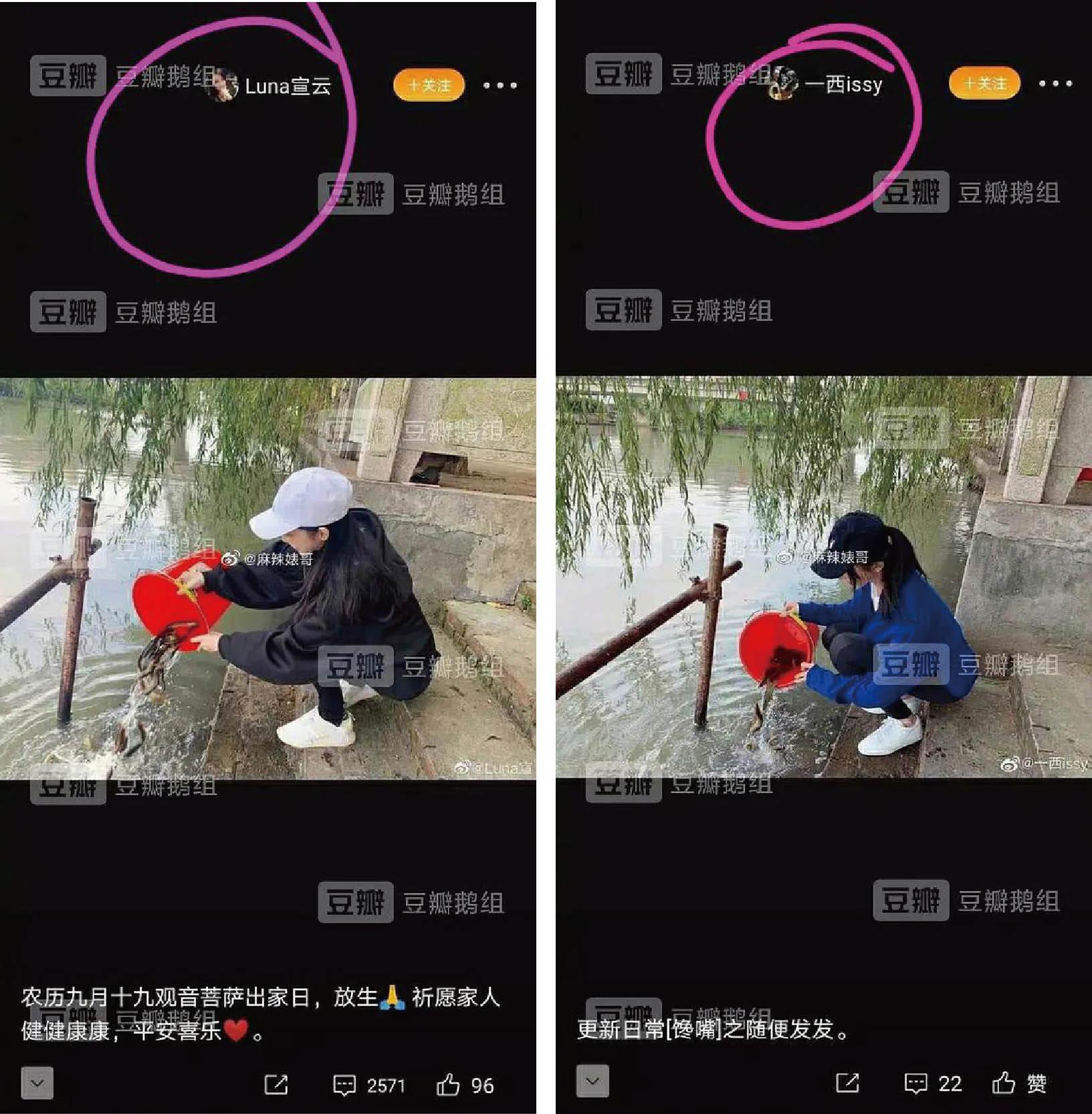 Luna(左圖)在社交平台曬放生照,被揭與其他網紅照片百分百雷同。(取材自微博)
