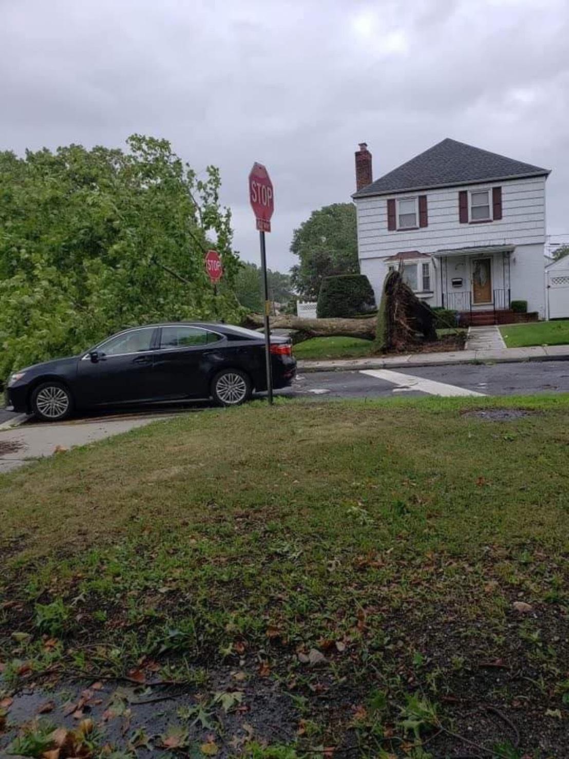 皇后區20大道與Utopia大道一戶住家前,大樹被連根拔起。(Cheryl提供)