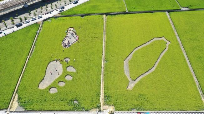 玉里鎮今年的稻草圖騰,以黑熊腳印與台灣為元素。(圖:可樂旅遊提供)