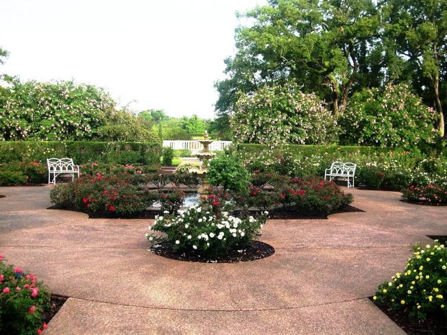 盧家花園園區一景。(取自臉書)